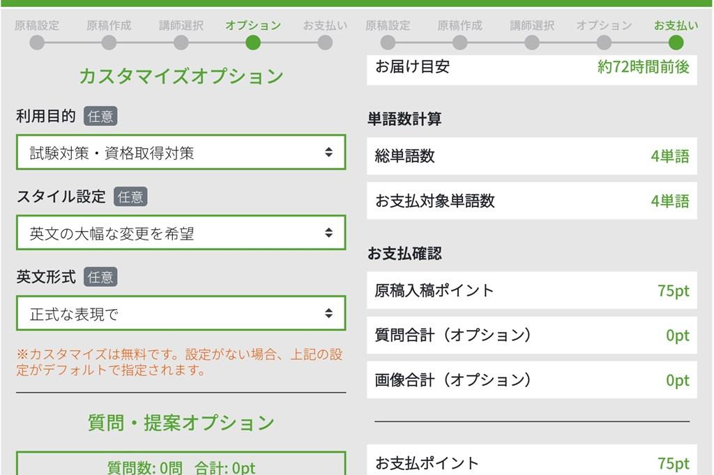 IDIYの利用画面(カスタマイズオプション設定)